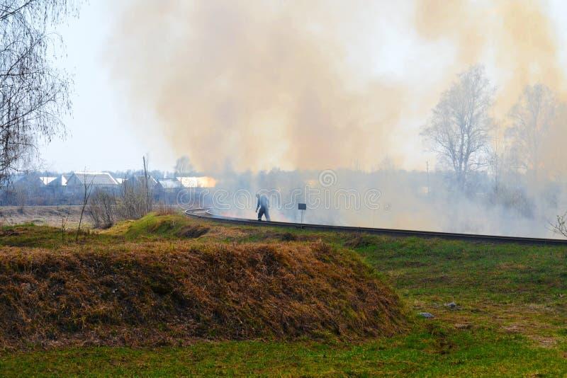 自然火在春天之前 免版税库存图片