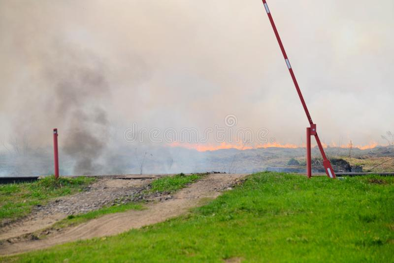 自然火在春天之前 免版税库存照片