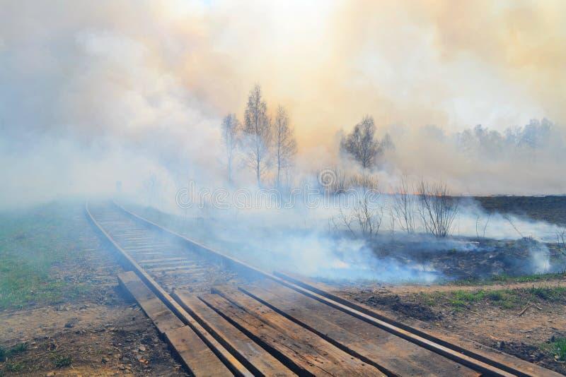 自然火在春天之前 图库摄影