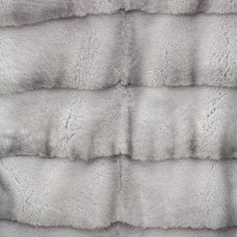 自然灰色发光的毛皮纹理  免版税库存照片