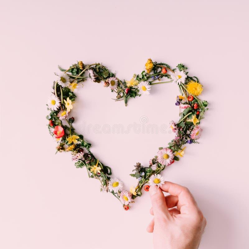 自然的心脏 概念亲吻妇女的爱人 平的位置 免版税库存图片