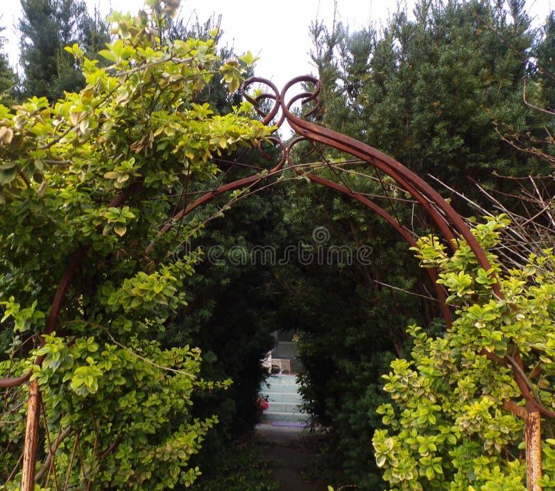 自然的拱道 库存照片