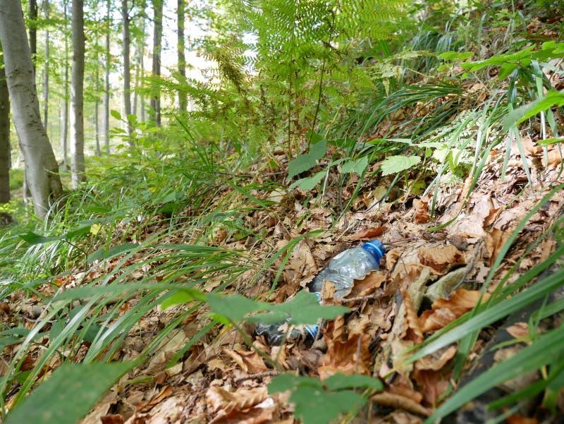 自然的生态问题和污染由垃圾的. 环境, 路径.