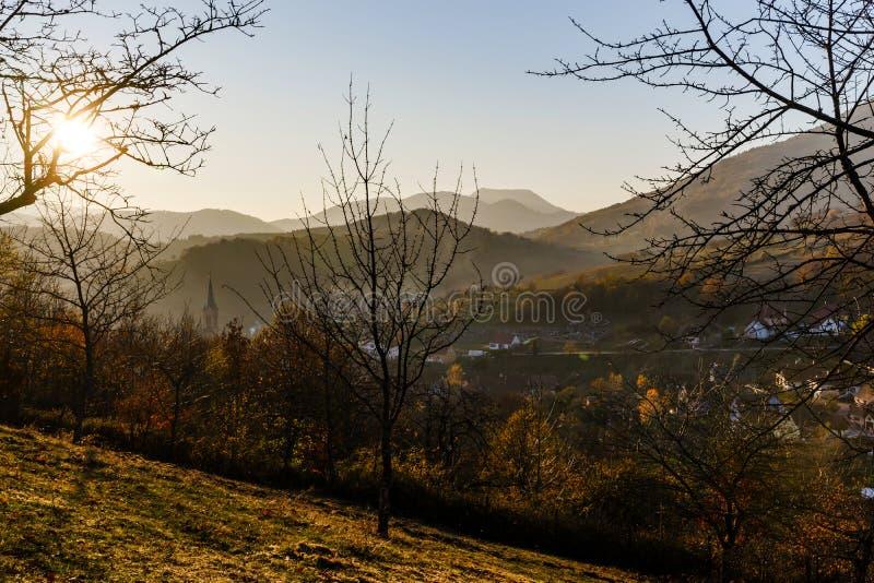 自然的秋天颜色在阿尔萨斯、五颜六色的叶子和fgorests的 免版税库存图片