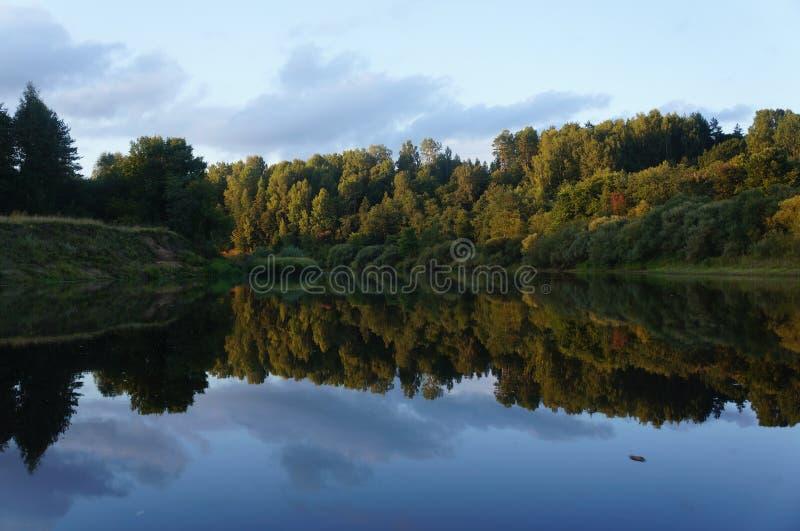 Download 自然的镜子 库存图片. 图片 包括有 本质, 森林, 反映, 云彩, beautifuler, 横向, 俄国 - 59112659