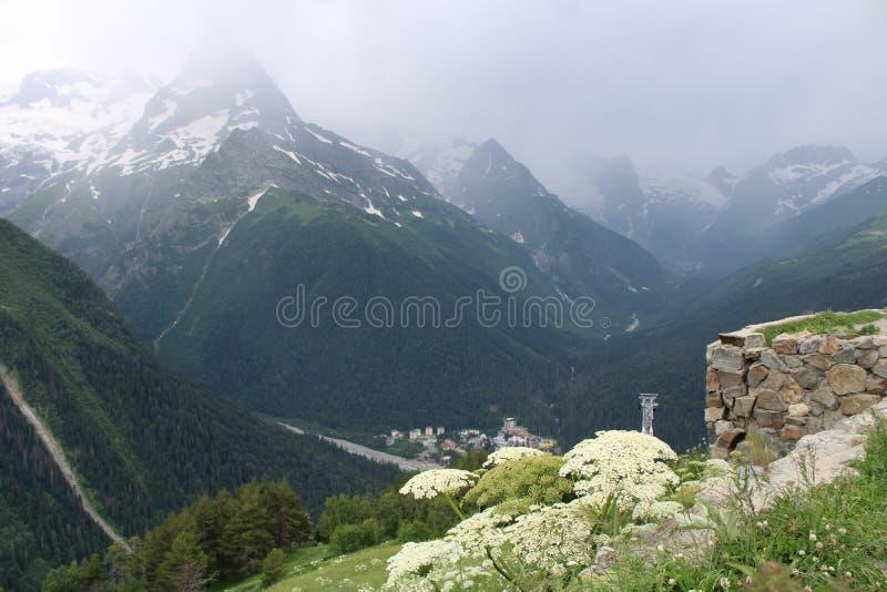 自然秀丽在山的 免版税库存照片