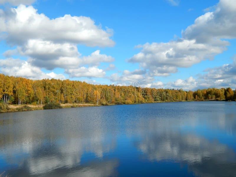 自然秋天风景在河的有黄色的留下特写镜头 免版税库存图片