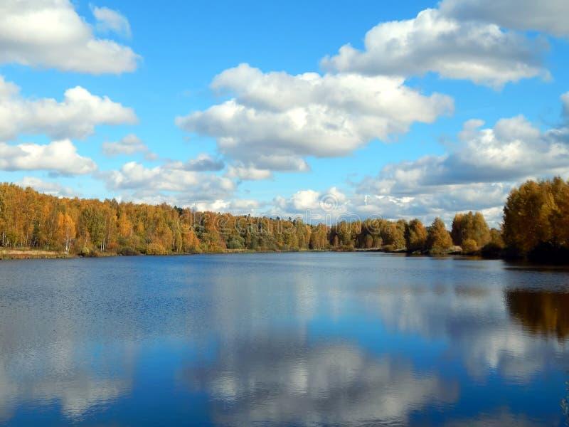 自然秋天风景在河的有黄色的留下特写镜头 免版税库存照片