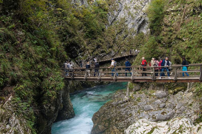 自然秋天风景 在Soteska Vintgar斯洛文尼亚的瀑布 免版税库存照片
