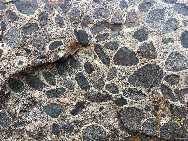 自然纹理背景-离开与斑点的石头 库存照片