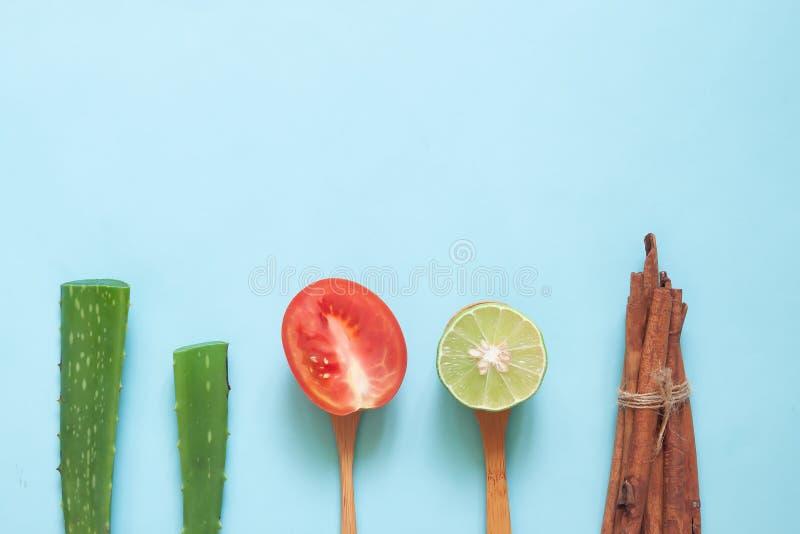 自然美人概念创造性的平的位置、芦荟维拉,蕃茄、石灰和肉桂条、健康和皮肤护理 免版税库存照片