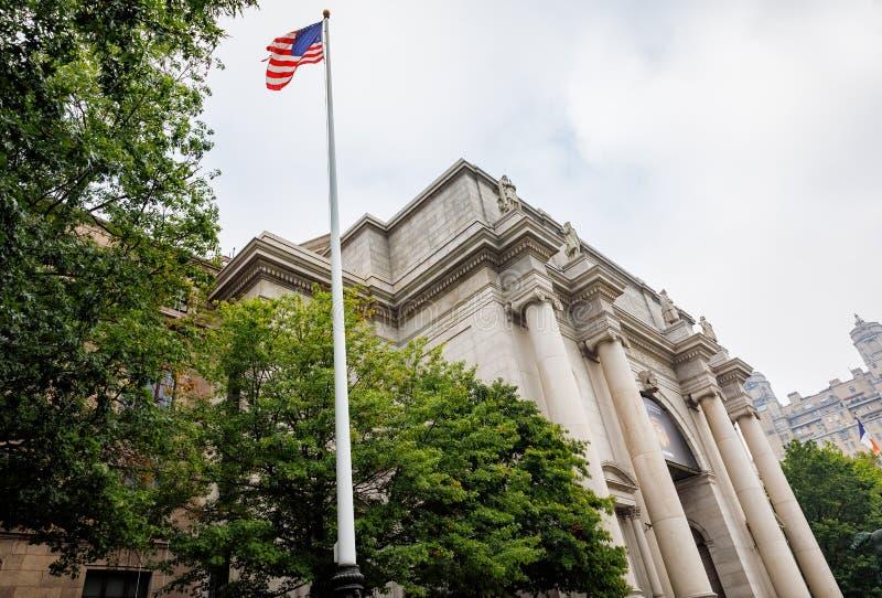 自然美国历史记录的博物馆 库存图片