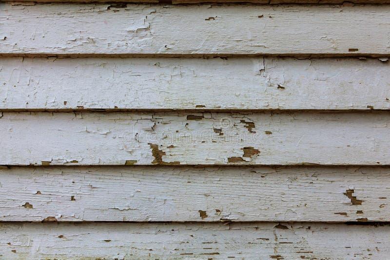 自然老灰色木纹理样式或木背景内部的或外部设计与拷贝空间 向量例证