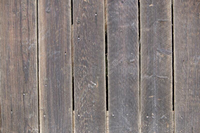 自然老葡萄酒特写镜头风化了板条和委员会灰色棕色没有漆的坚实木篱芭或门  生态学纹理 库存图片