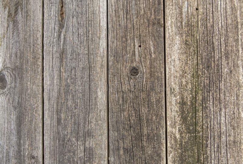 自然老葡萄酒特写镜头风化了板条和委员会灰色棕色没有漆的坚实木篱芭或门  生态学纹理 免版税库存图片