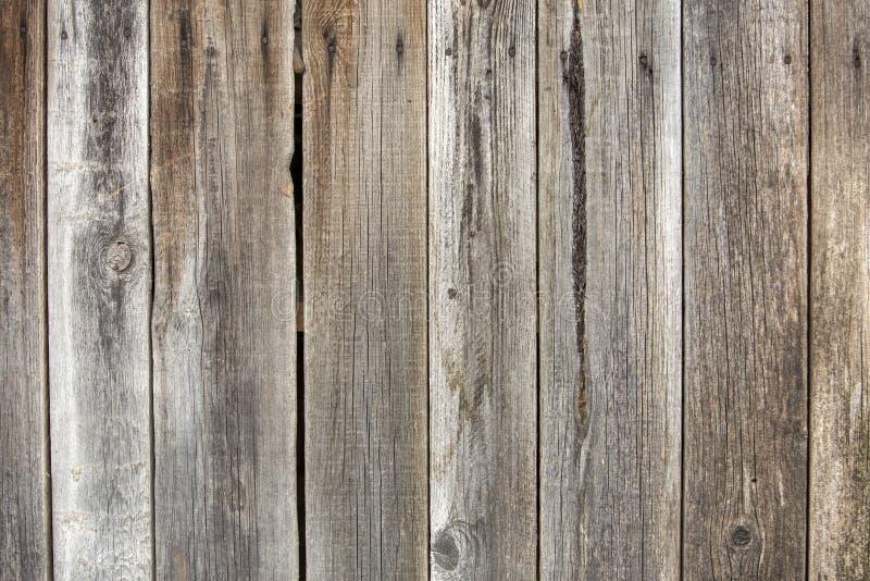 自然老葡萄酒特写镜头风化了板条和委员会灰色棕色没有漆的坚实木篱芭或门  生态学纹理 免版税图库摄影