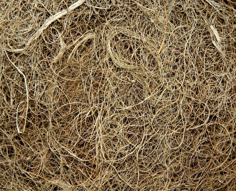 自然背景的粗硬纤维 免版税库存照片