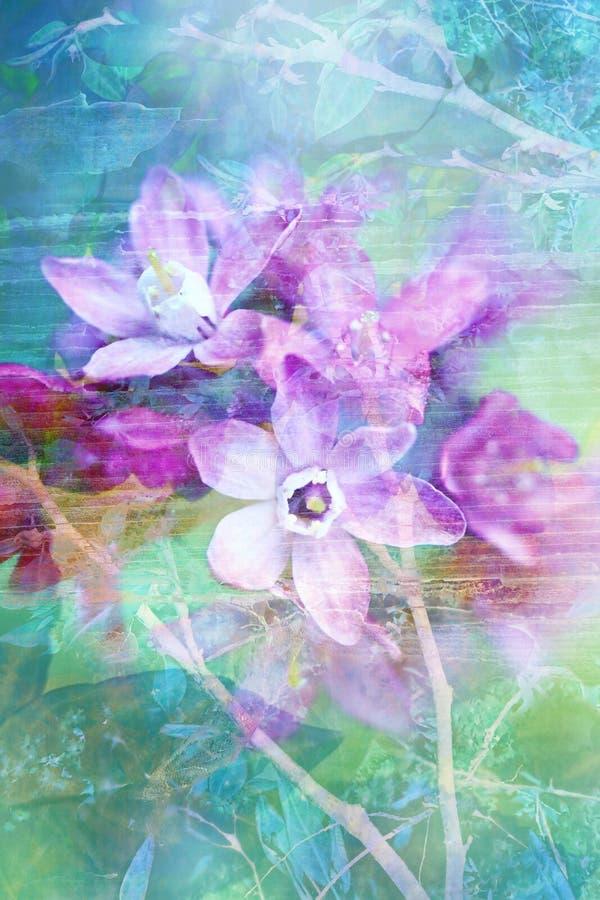 自然背景美好的花的grunge 皇族释放例证