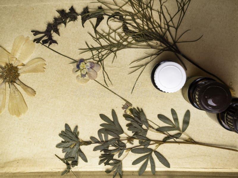 自然草药用新鲜的草本和花,在纸背景的芳香疗法精油 库存照片