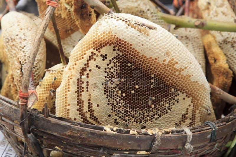 自然蜂窝在新鲜市场上 免版税图库摄影