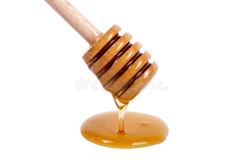 自然蜂蜜 图库摄影
