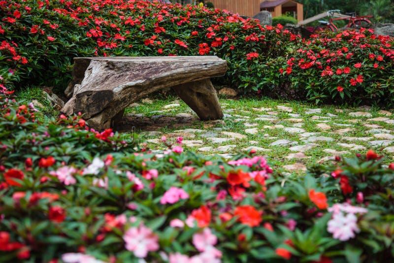 自然长木凳在装饰装饰花园中间品种的公园  夏天室外家庭Activit 免版税图库摄影