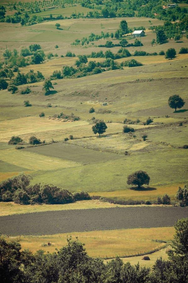 自然领域风景 免版税图库摄影