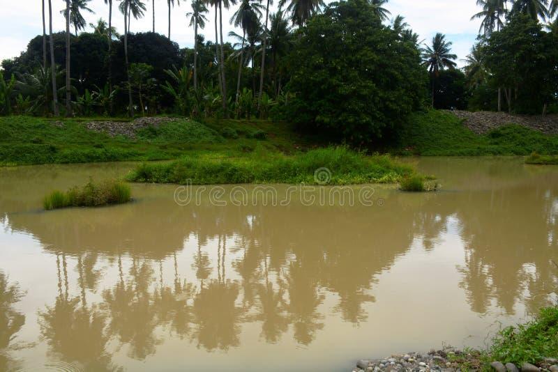 自然风景在Bulatukan河,新的Clarin, Bansalan,南达沃省,菲律宾 免版税库存照片