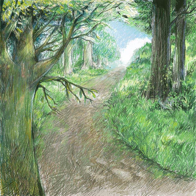 自然风景艺术颜色图画例证 与狂放forestBeautiful的场面的自然路 向量例证