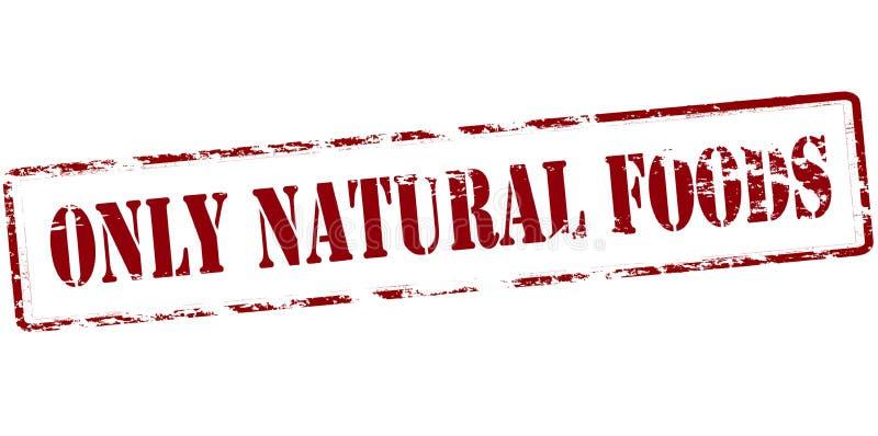 仅自然食物 库存例证
