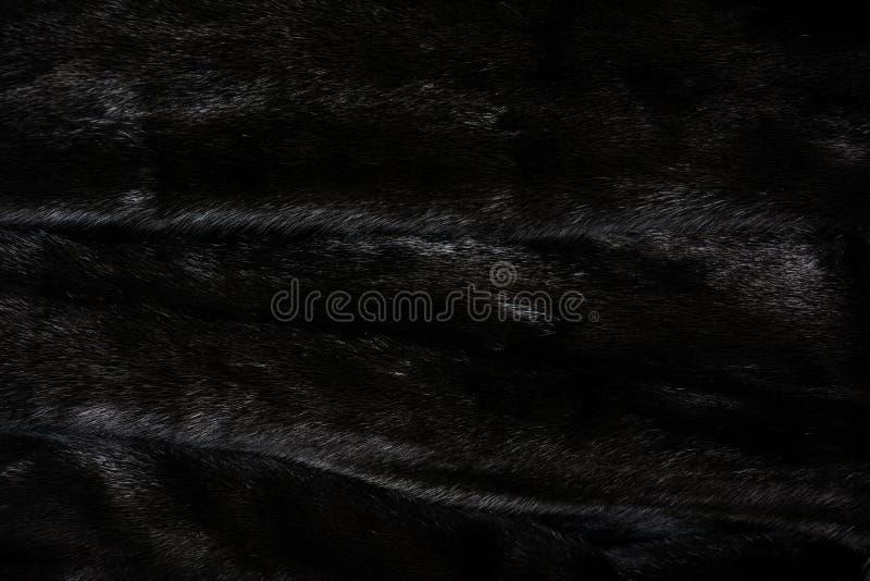 自然黑发光的毛皮纹理  库存照片