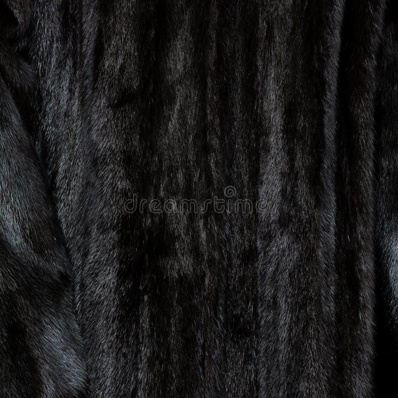 自然黑发光的毛皮纹理  库存图片