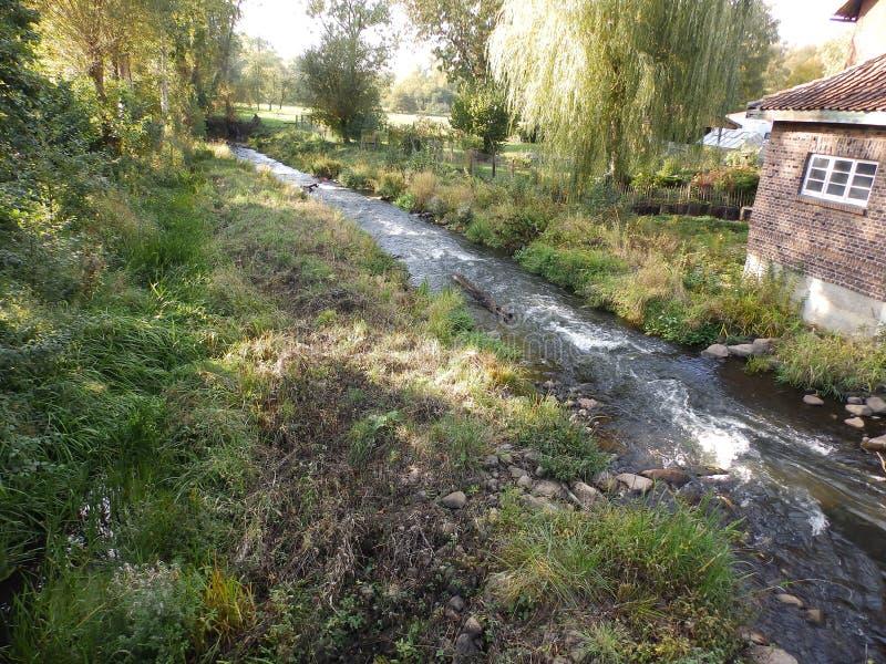 自然,与一条小河的风景,在德国 免版税库存图片