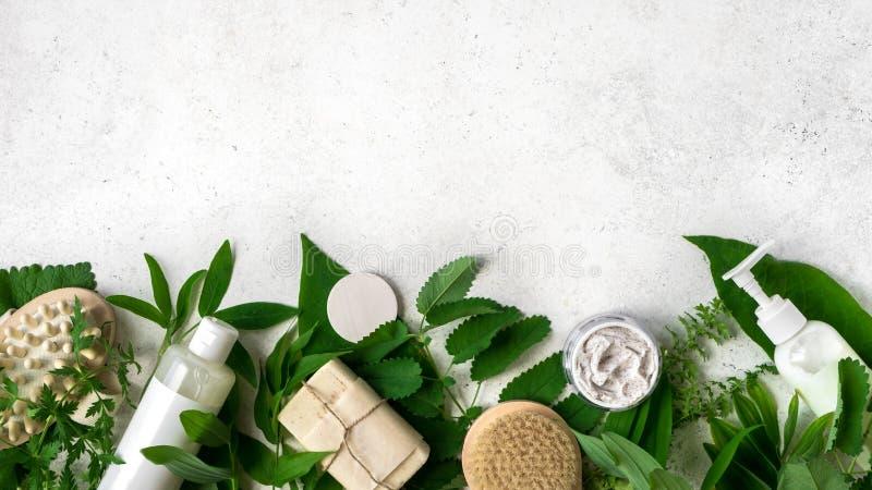 自然Skincare和叶子 库存照片