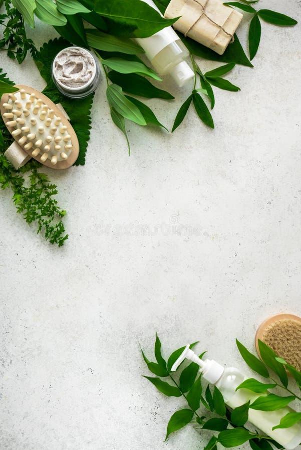 自然Skincare和叶子 免版税图库摄影