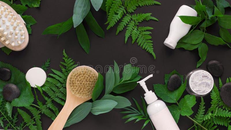 自然Skincare和叶子 免版税库存图片