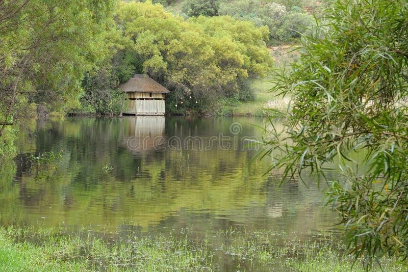 自由州植物园在布隆方丹,南非 免版税库存照片