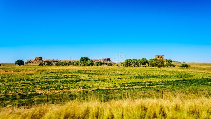 自由州省的肥沃的农地在南非 库存图片