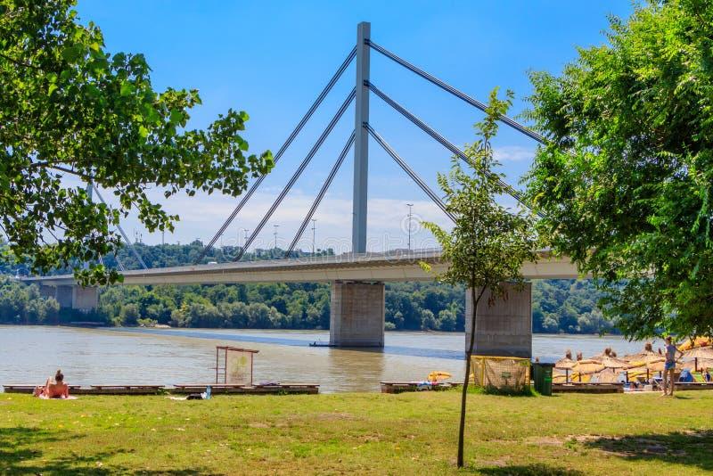 自由桥梁在多瑙河的一座缆绳被停留的桥梁在诺维萨德,塞尔维亚 图库摄影