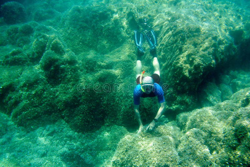 自由的潜水者 库存照片