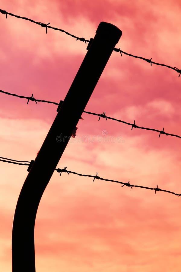 自由缺乏 库存图片