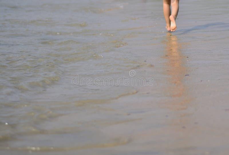 自由自在:跑在海滩 图库摄影