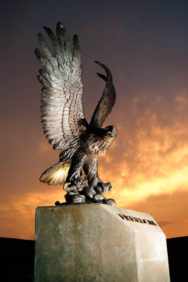 自由鸟 免版税库存图片