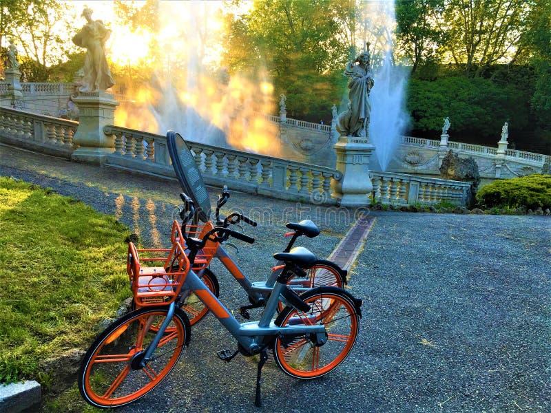 自行车、华伦泰公园和健康生活在都灵市,意大利 免版税图库摄影