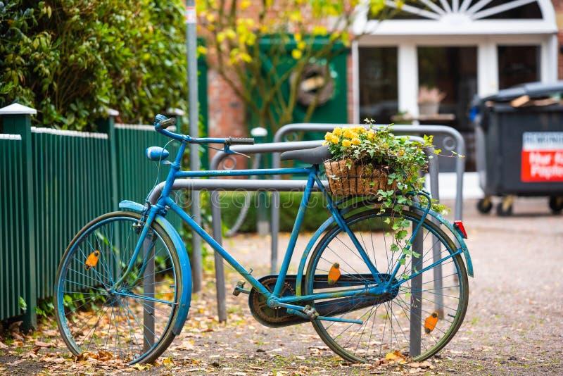 自行车作为在这些照片的主要题材 库存照片