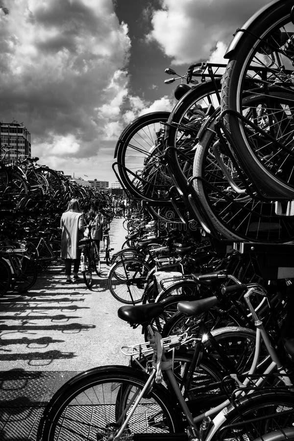 自行车停车处 库存照片