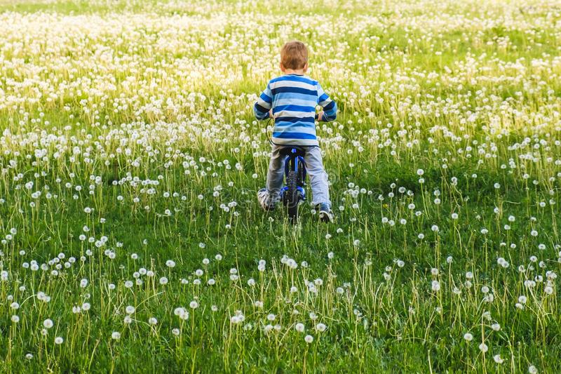 自行车儿童夏天自行车孩子 骑自行车者活动 库存照片