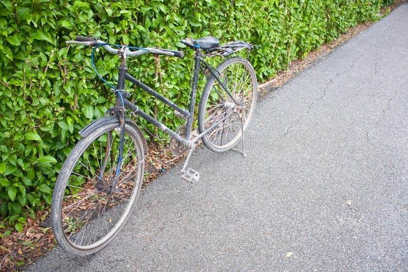 自行车公园 库存图片