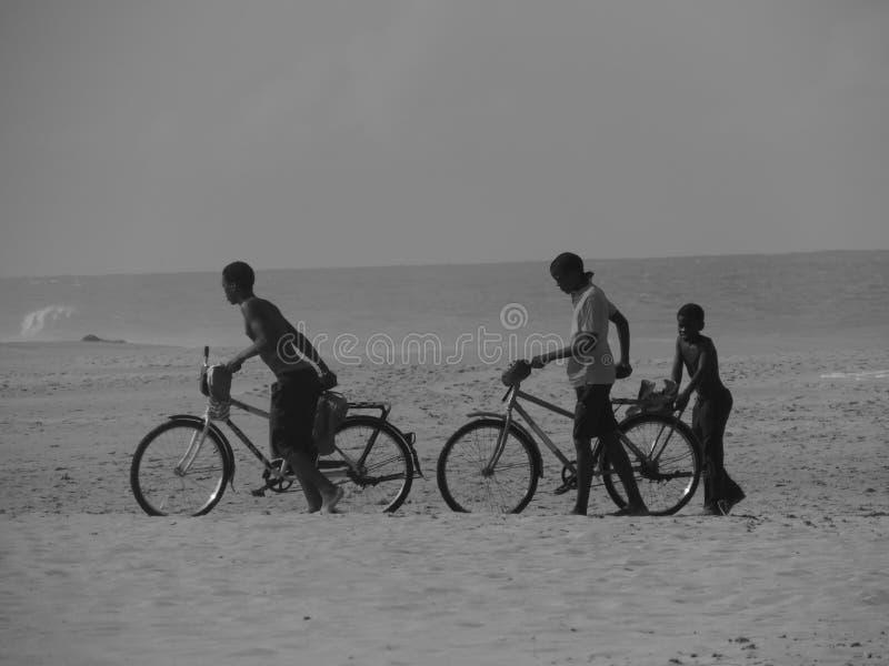 自行车和海滩 库存图片