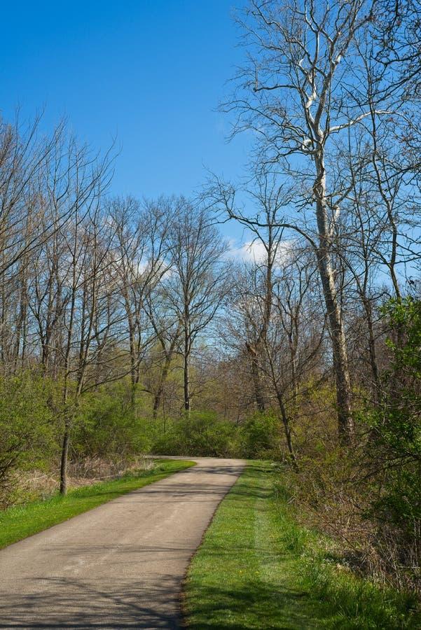 自行车和远足路径在自然环境中 库存图片
